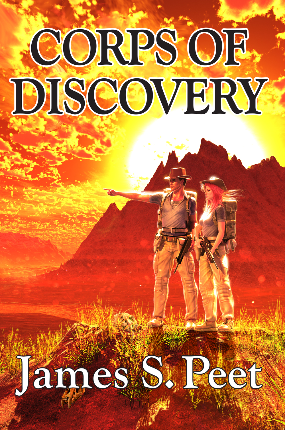 The Discovery Corp book cover