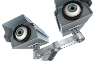 Twin security cams